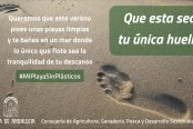 190822_Campaña-huella-sin-plásticos-playas-174x116.jpeg