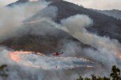 sierra-bermeja-incendio-1-174x116.jpg