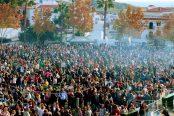 36-Fiesta-de-las-Migas-de-Torrox-Llano-Almazara-2-174x116.jpg
