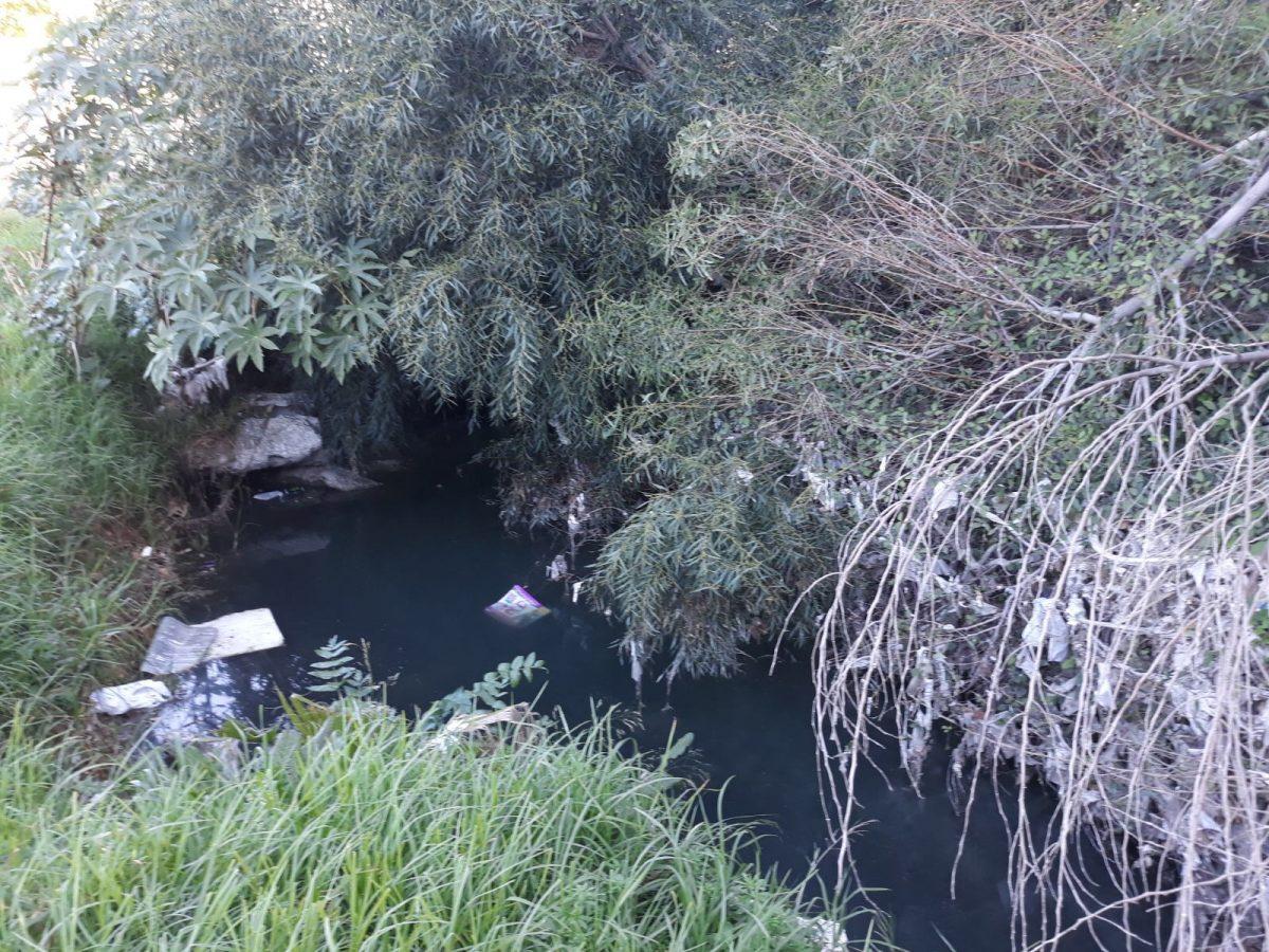 Iu denuncia la existencia de un vertido de aguas fecales for Oficina de empleo velez malaga