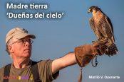aves-174x116.jpg