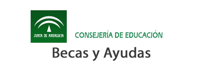 La Consejería de Educación y Deporte convoca las becas Andalucía Segunda Oportunidad y Adriano | AxarquiaPlus