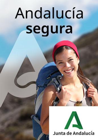 Vertical Andalucia Segura