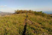 trail-4-174x116.jpg